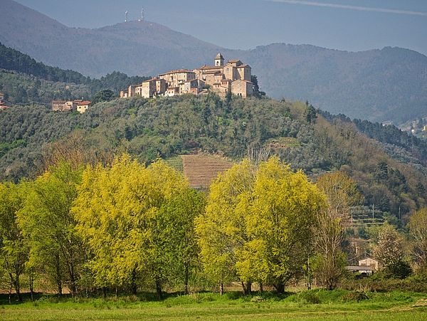 Pirnas Partnerstadt Capannori in Italien